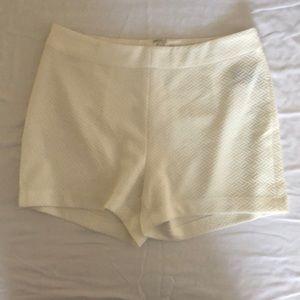 Ark & Co. Shorts